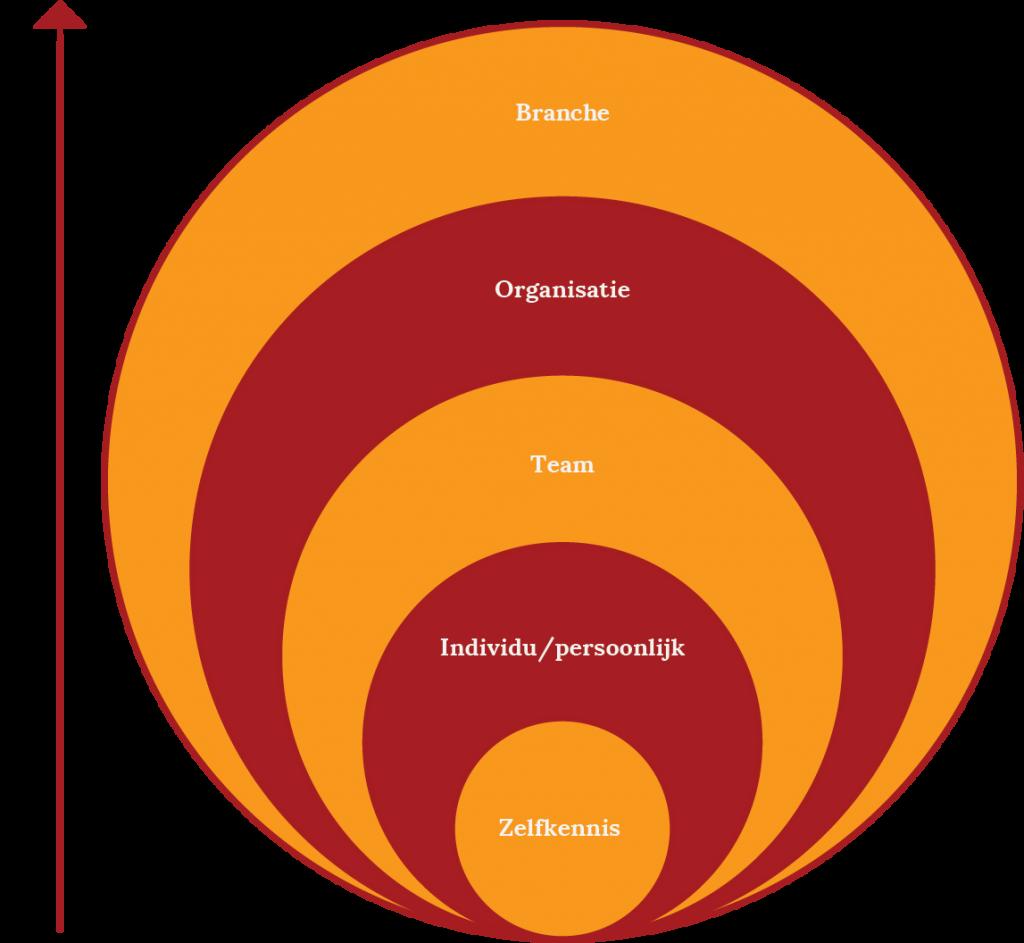 Organisatieontwikkeling Arrow
